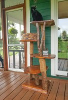 wooden tree on porch